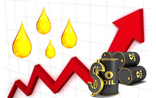 Oil Price rises
